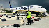 Саммит стран Евросоюза запретил белорусским авиакомпаниям осуществлять рейсы в аэропорты ЕС