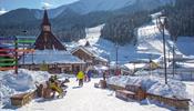 Закрытые границы – «допинг» для горнолыжного отдыха в России