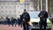 В Букингемский дворец вводятся войска