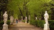 Вход в Летний сад станет платным