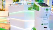 Спасение Янтарной комнаты от сверхтуризма, возможно, поручат «Сбербанку»