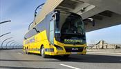 Ecolines возобновляет регулярные пассажирские перевозки
