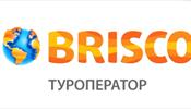 Brisco привержен четкой динамике