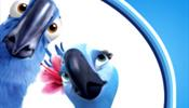 Туристы «Синей птицы» звонят, но …