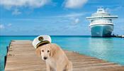 Royal Caribbean больше не пустит на борт милых животных