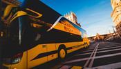 ECOLINES восстанавливает маршруты в четыре страны