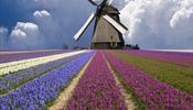 Майские праздники – в Европе