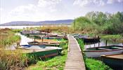 На озера Венгрии вновь полетел прямой рейс