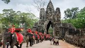 В Ангкор Ват слоны больше не будут ездовыми