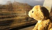 В России закрыты еще 2 детских лагеря