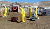 В Монголии чума, россияне не могут вернуться домой