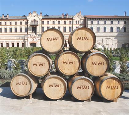 Мультиформатный замок MIMI в Молдавии – наследие аристократов для туристов