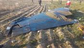 Не все верят, что самолет МАУ был сбит ракетой